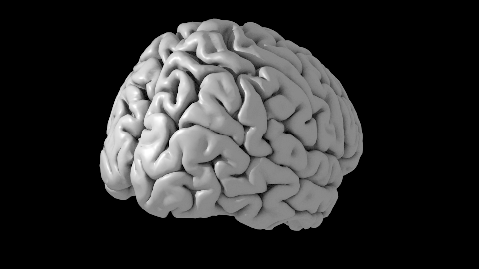 A FreeSurfer brain surface rendered in blender